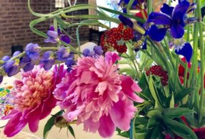 This is a picture of peonies and iris flowers showing natures resilience.